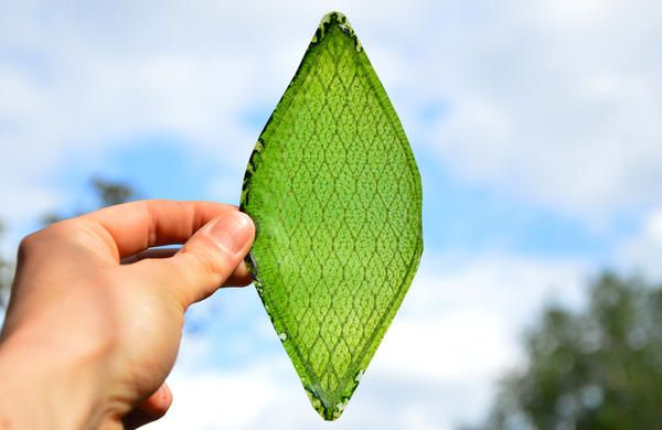 Silk Leaf :: THE LONDON DESIGN FESTIVAL