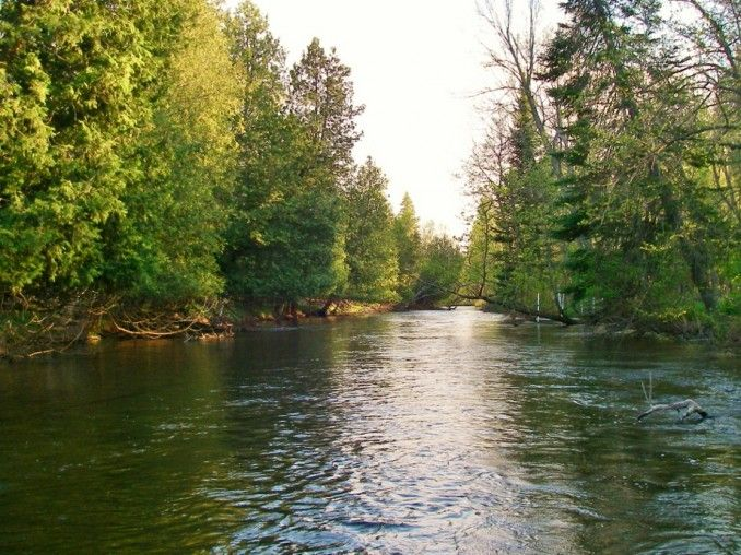 17 Best Images About Michigan Fishing On Pinterest