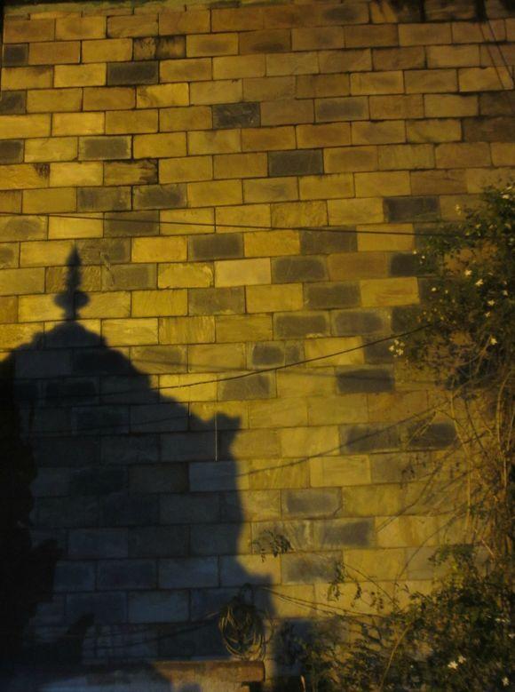 shadow play!!