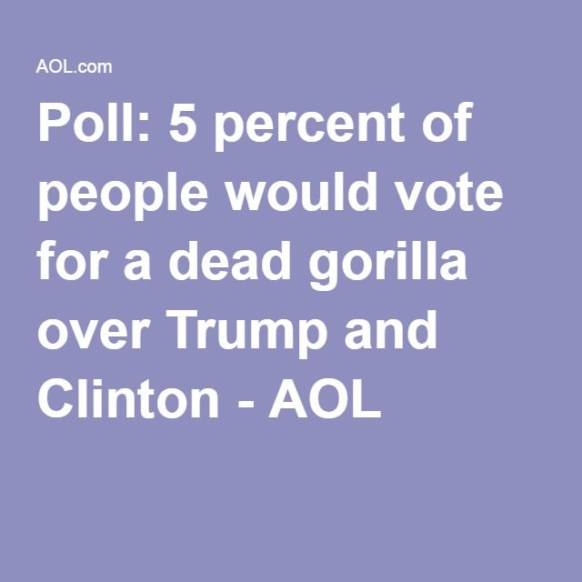 August 2, 2016 - Poll: 5 percent of people would vote for a dead gorilla over Trump and Clinton - AOL