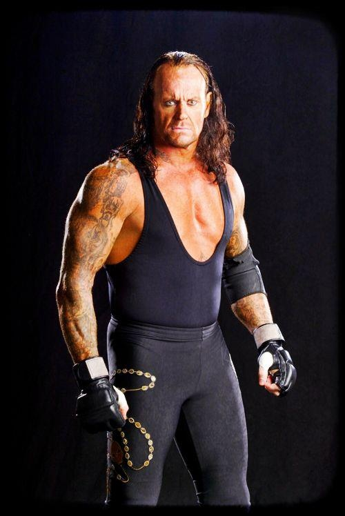 17 best images about wwe superstars past and present on pinterest