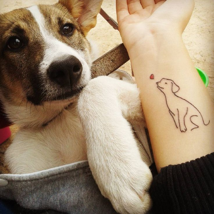 65 Admirable Dog Tattoo Ideas & Designs For Men And Women Check more at http://tattoo-journal.com/65-admirable-dog-tattoos/