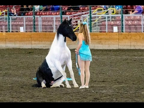 Liberty and Free Riding Performance at the Evergreen State Fair watch this and get shivers down your spine!