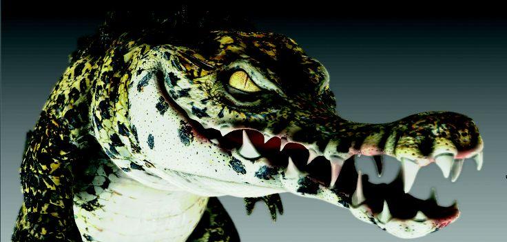 El estudiante tadeísta Daniel Quiñonez ha desarrollado un cortometraje animado, donde las aventuras de cuatro personajes –Curro, el gato; Truchaldo, el pez; Marianca, la sapa; y Gus, el cocodrilo–, que comparten un hábitat y luchan por la supervivencia, harán las delicias de los observadores.  IMAGEN Y PROYECTO Daniel Quiñonez - 1
