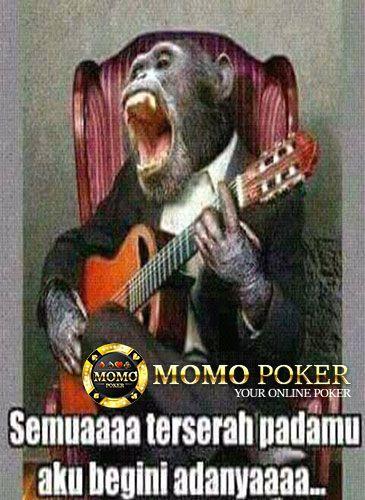 #memelucu #memelucuindonesia #humor #lol #Kocak #JudiPoker #JudiBola #PokerOnline #BandarPoker #JudiOnline #AgenPoker #BandarCeme #DominoQQ #CapsaSusun #LivePoker #DewaPoker #ZyngaPoker #TournamentPoker #aduQ