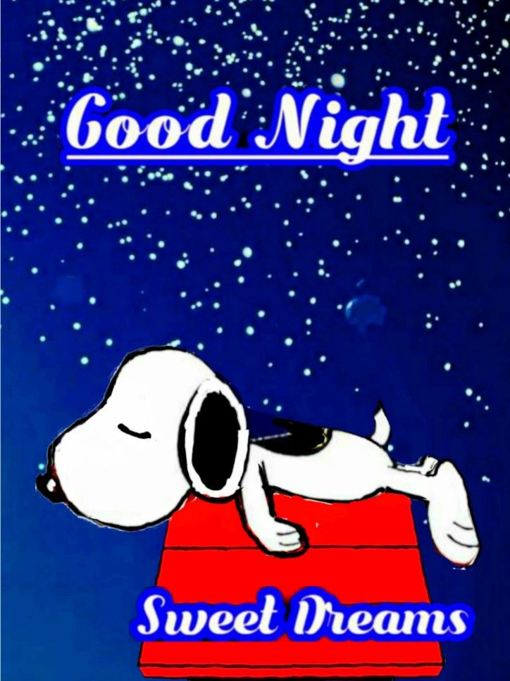 スヌーピー(good-night) | Goodnight snoopy, Snoopy pictures, Snoopy quotes
