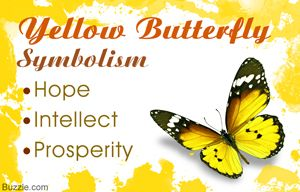 Yellow butterfly symbolism