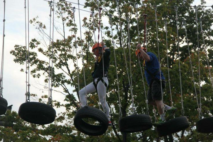 swinging woodlot retreat