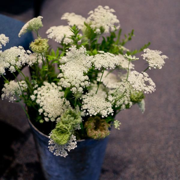 Queen Anne's lace.........one of my all time favorite wedding flower.