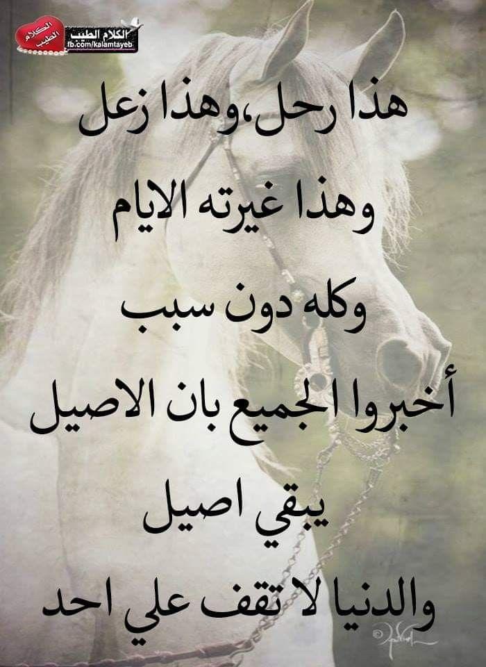 Pin By فلسطينية ولي الفخر On روائع الحكم Qoutes Arabic Calligraphy Calligraphy
