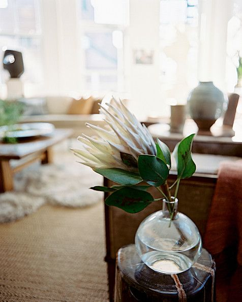 Brad Ford Photo - A vase of a single flower stem beside an upholstered armchair