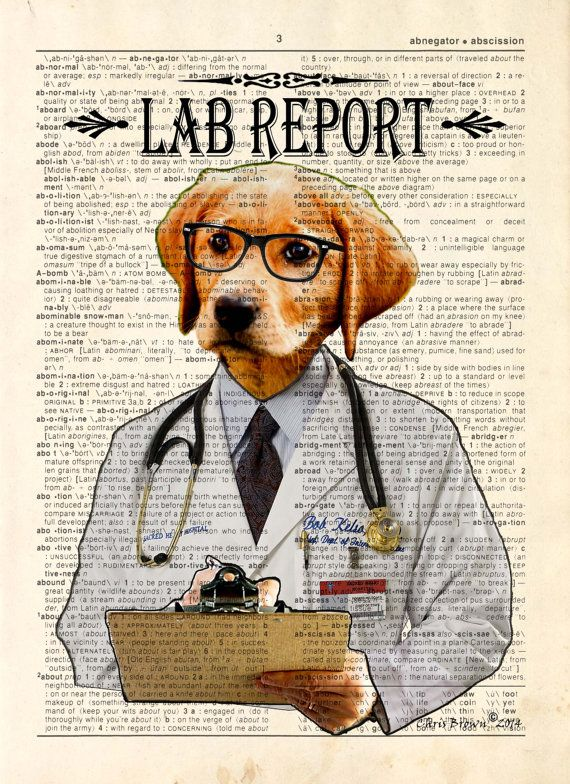 how to become a lab animal veterinarian