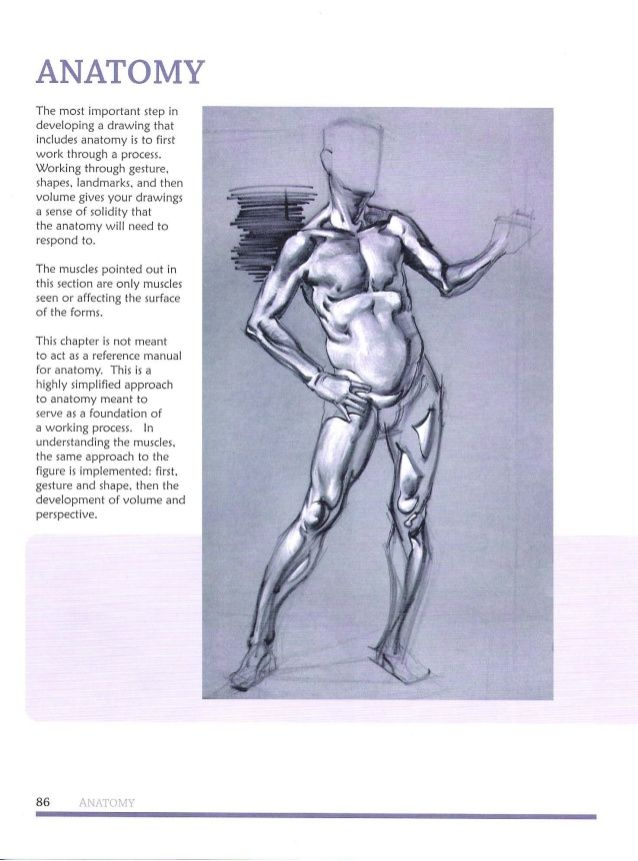 241 besten michael Hampton figure drawing - design and invention ...