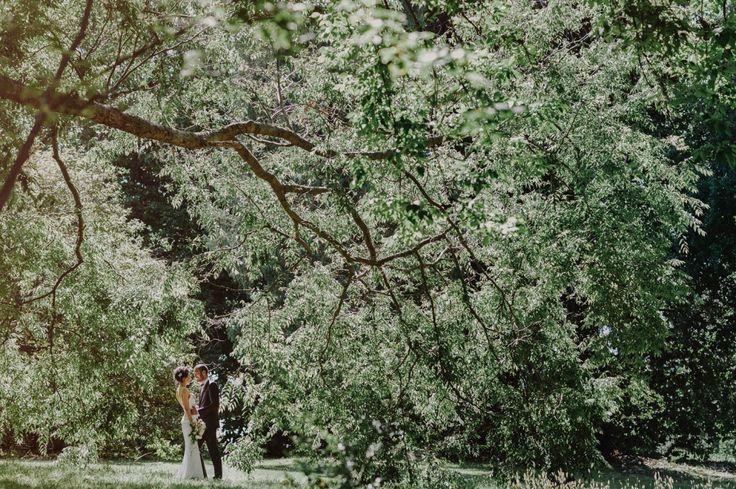Melbourne Botanical Garden wedding - Free The Bird Photography