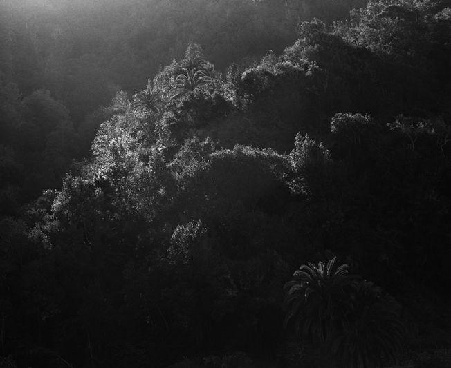 Awoiska van der Molen - Landscapes 2012-2013