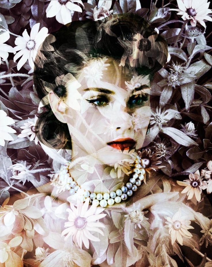 -Valérie Belin-  'Velvet Centaurea'  (2010)