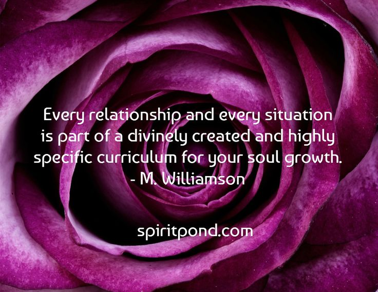 Every relationship and every situation is part of a divinely created and highly specific curriculum for your soul growth. - M. Williamson /    spiritpond.com
