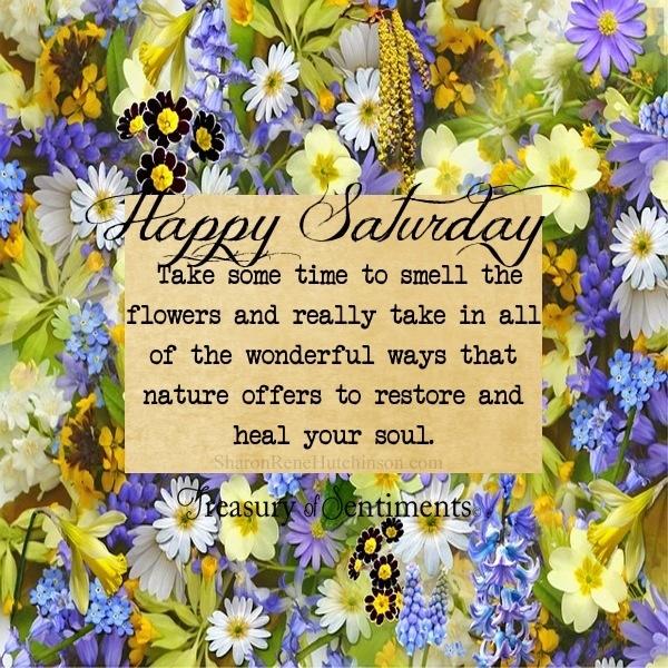 Happy Saturday Quote Via Wwwfacebookcomtreasuryofsentiments