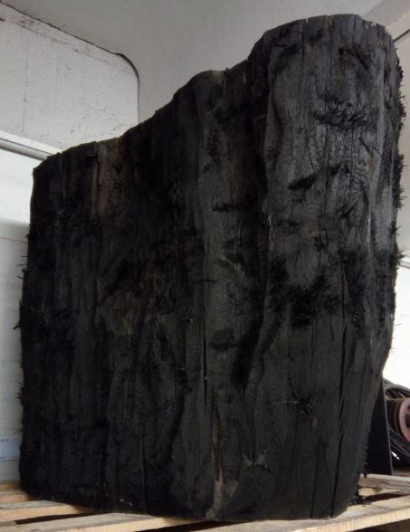 StoneOak roots