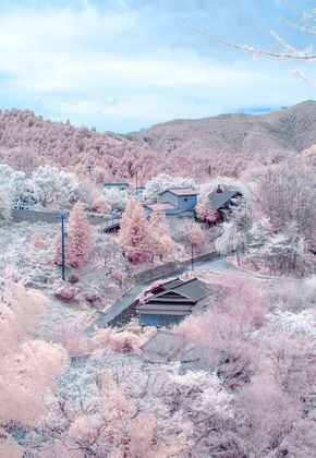 Yoshino District, Nara Pref. in its cherry blossom season, thought to be one of the most beautiful villages in Japan. お花見シーズンの奈良県吉野郡吉野町。2012年、「日本で最も美しい村」連合に加盟。