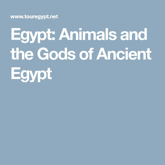 Egypt: Animals and the Gods of Ancient Egypt