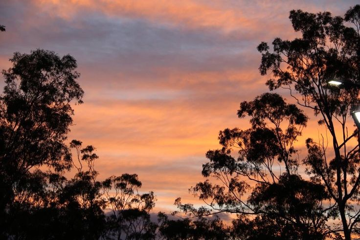 Sunset Mt Cooth