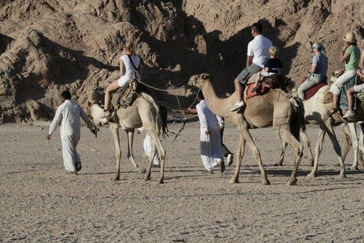 """Il silenzio incantato del Sinai...dove ritrovi te stesso e ti senti finalmente libero. Uno dei miei """"passaggi"""" di crescita interiore."""