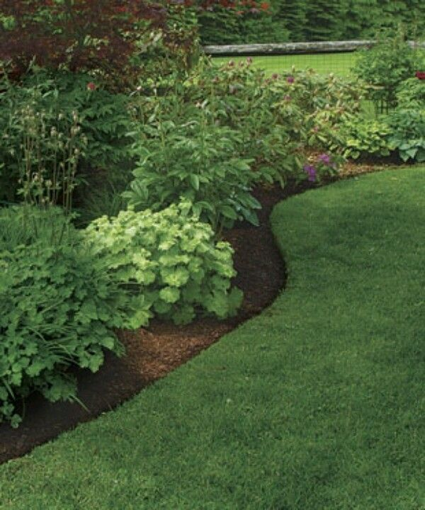 Landscape around trees natural border separating grass for Edging flower beds with edger