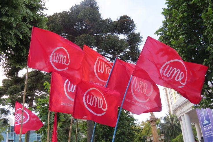 Flags, Union Nacional Estudiantil. Chile.