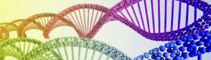 A Level Biology Get To University – LIVE-UNTERRICHT VON ZU HAUSE AUS – Begrenzte…