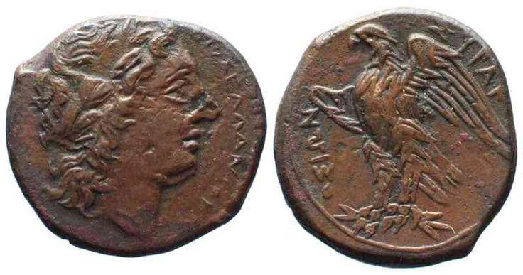 -287/-278 Sicily Sicily SYRACUSE AE-Litra HIKETAS II 287-278 BC ZEUS HELLANIOS /EAGLE XF! # 13679 EF