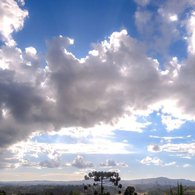 O sublime ao alcance dos olhos Araucária na região metropolitana de Curitiba. . . . . . #sky #skylovers #sunlight #sun #nature #bestoftheday #picoftheday #love #curitiba #curitibacult #curitilover #araucaria #curitibaspace #curitibaspace #curitibanices #parana #curitibacool #ignature #photography #photo #fotografos_brasileiros #rodadefotografos #amazing #japragazeta #tônarpc #diaadia #campolargo #sunset