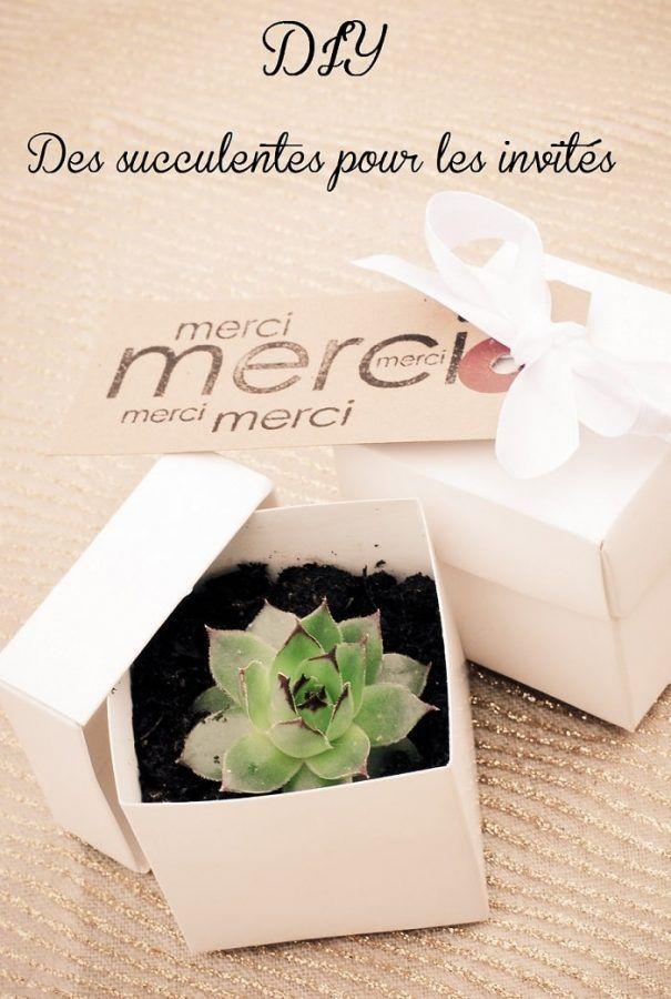 Cadeau original et pas cher pour vos invités mariage : des succulentes – #Bloem…