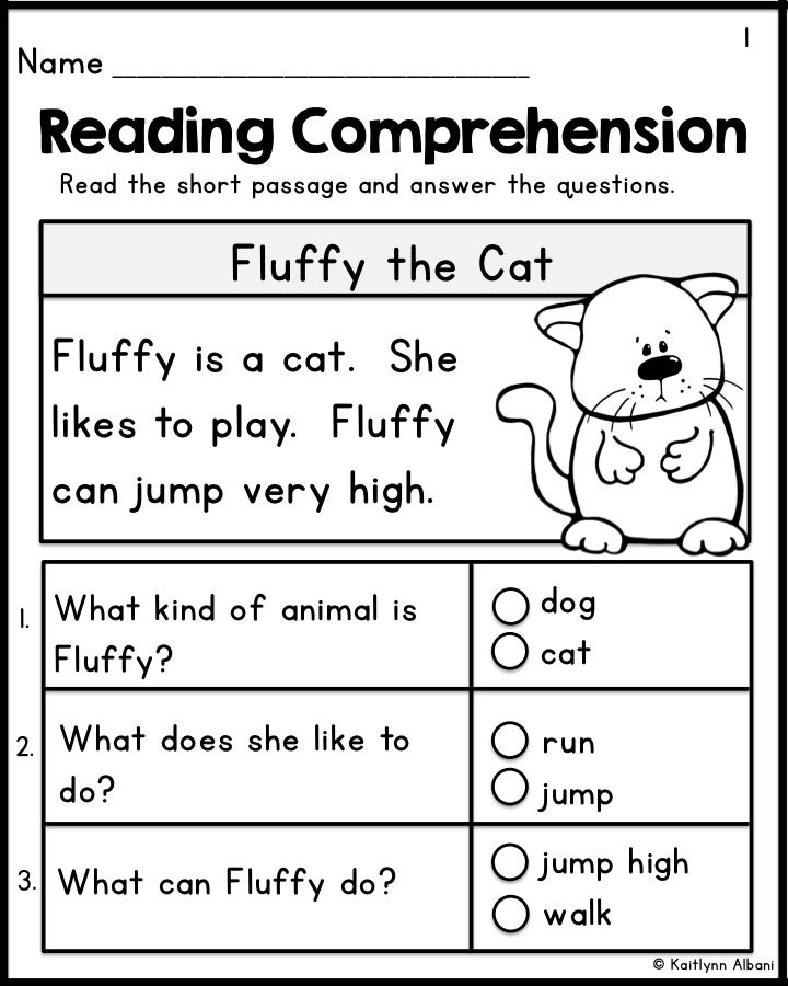 Kindergarten Reading Comprehension Passages - Set 1 ...