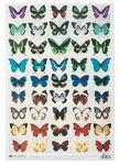 Decoupage-Papier, Butterflies (35 x 50 cm)