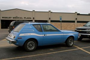 The AMC Gremlin was based on the Hornet's platform