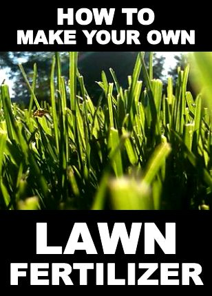 How to make your own lawn fertilizer. A simple DIY way to