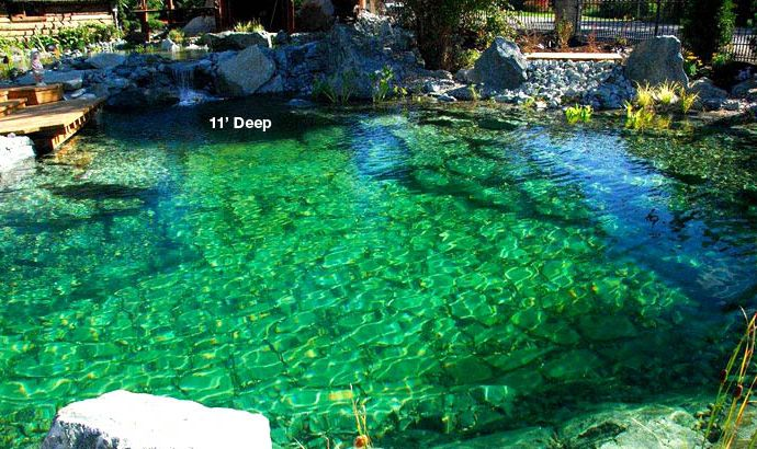 17 best images about natural pool swim pond on pinterest for Natural pond maintenance