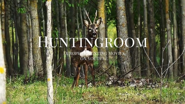 Bockjagd 2016 in Ungarn in 4k (Roebuck hunting in Hungary, Bukkejagt, Ch...