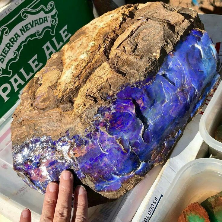 ReLiveTucson Massive Australian Boulder Opal tucsongemandmineralshow