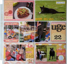 Life in Details Challenge Blog: July Pocket Style Challenge: Use a 4x6 photo over multiple pockets