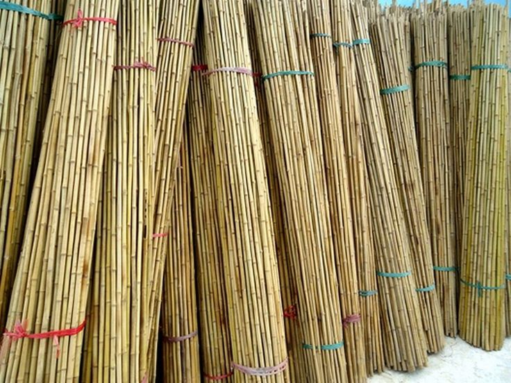 Home Depot Bamboo Fencing Panels Home Design Interior
