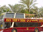 Visite nocturne de Dubai à bord d'un bus à arrêts multiples - Dubaï