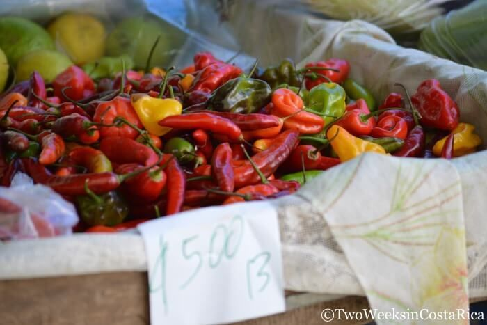 Hot Peppers at the Quepos Farmers Market | Two Weeks in Costa Rica