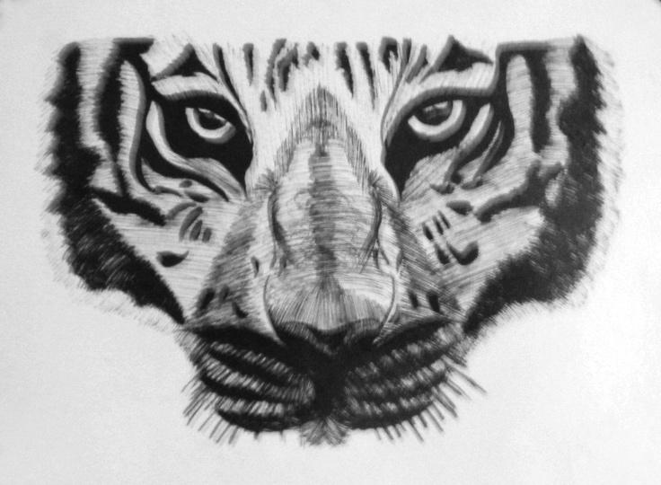 Dibujo del Rostro de un Tigre. Hecho a Tinta china.