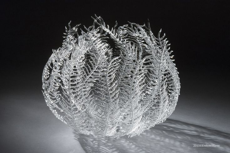 Delicate Glass Sea Life Sculptures by Emily Williams  http://www.thisiscolossal.com/2015/05/delicate-glass-sea-life-sculptures-by-emily-williams/