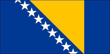 Drapeau de #Bosnie