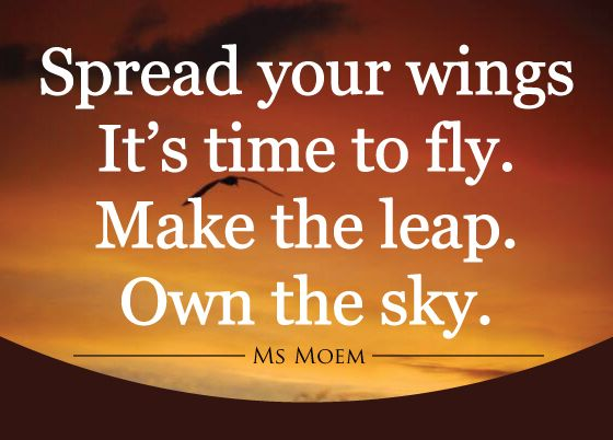 spread your wings it's time to fly. Make the leap. Own the sky. | poem quote | ms moem