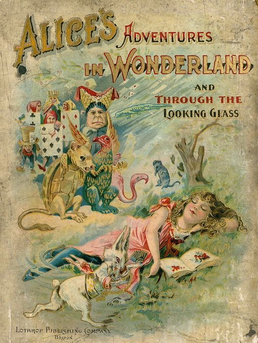 576 best book covers images on pinterest book covers vintage alices adventures in wonderland and through the looking glass written by lewis carroll illustrated by john tenniel baldwin library of historical fandeluxe PDF
