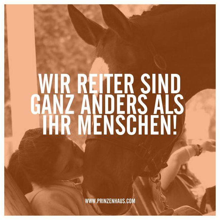 www.prinzenhaus.com Wir Reiter sind ganz anders als ihr Menschen!